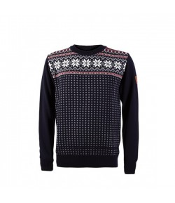 DALE GARMISCH men sweater